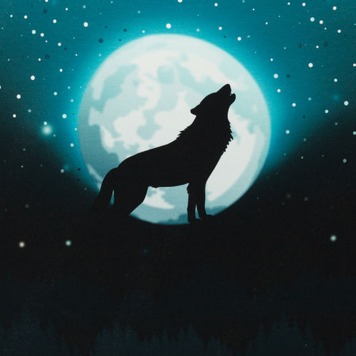 Wolf Moon 2.0 by lycklig design, Sommersweat, petrol